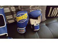 Sandee boxing gloves and pads