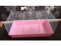 2 female guinea pigs for sale- with cage