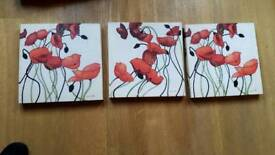 Canvas pic x 3