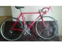Retro Custom Sirius Road Bike