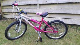 """Bike Girls 20"""""""