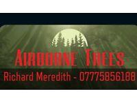 Tree surgeon and garden maintenance