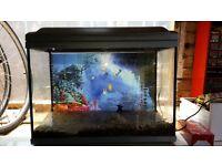 65litre fish tank