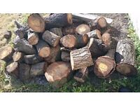 FREE LOGS COLLECTION ONLY LONDON