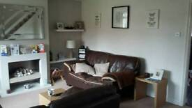 2 x 2 seater brown sofas + footstool.