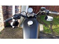 Harley Sportster Iron 2014
