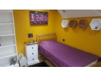 FANTASTIC NEW ROOM AVAILABLE NOW IN THE CLEANEST & SAFEST HOUSE