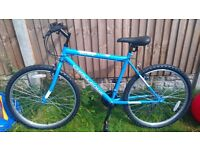 Men's mountain Bike - Brand New Condition