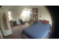 Large double room in two bed flat Lewes Road area