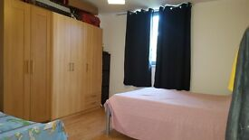 One bedroom flat for Professional