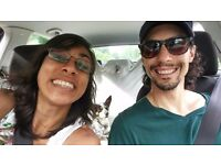 Adorable Couple + Dog Looking for a Place to Call Home Starting from Nov 1. Would love flatmates!