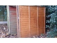 Fence panels x 6 for sale
