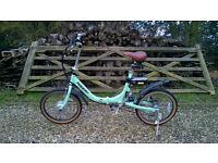 Hopper Shopper SE Electric Bike