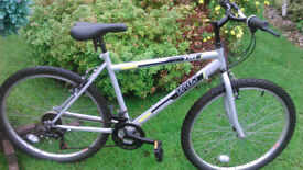 mountain bike for sale in perfect working order.