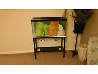 fish tank & stand with all accessories