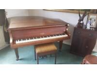 Baby Grand Piano - Allison Londo