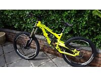 NEED GONE: 2013 YT industries Tues Special edition Downhill bike