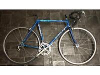 Retro Ribble racer campagnolo/ road bike