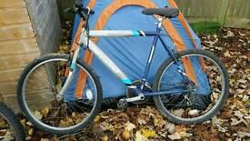 Townsend Bike