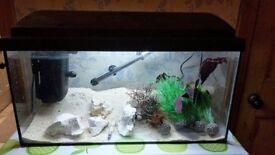 Full Tropical Fish Tank, including heater, pump / filter, etc