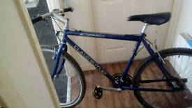 Bargain Claude butler adults mountain bike