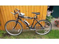Raleigh stonefly bike