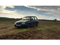 Rover 100 ascot SE