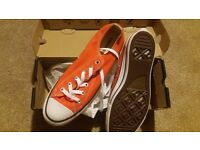 Brand new Converse (never used)