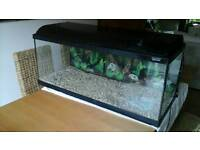 3ft 4inch fish tank with hood