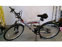 Torus Harlem mountain Bike