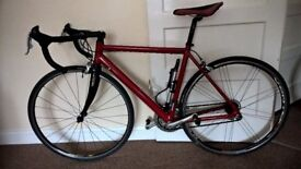Race bike - Carbon forks - Campagnolo set - Slick tyres - Newly serviced