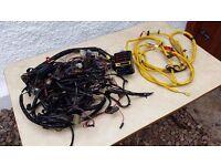 Full Classic Mini MPI Wiring Loom