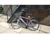 5 month old City Bike on Sale