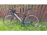 Carrera Zelos LTD 14 Road Bicycle