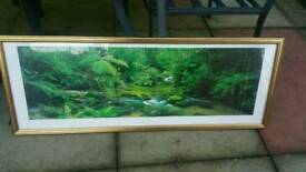 Forrest picture in frame