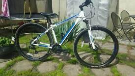 Bentini Comp 29er Mountain Bike