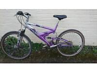 Teenage Girls Raleigh Mtb mountain bike
