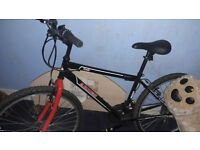 Trax moutain bike 21 speed perfect codition