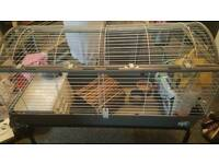 Indoor rabbit/guinea-pig cage and stand