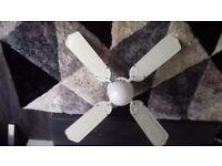 Celiling fan and light