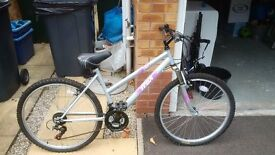 older girls bike