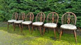 6 Ercol Dining Chairs Farmhouse Rustic Chic splayed legs