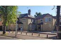 1 bedroom in Dogsthorpe Road, Peterborough, PE1
