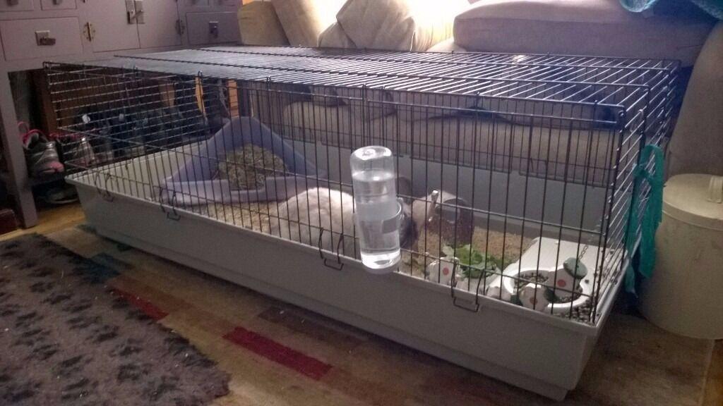 Ferplast 140 large indoor rabbit guinea pig cage in for Large indoor guinea pig cages