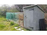 Outdoor chicken house, coop and run