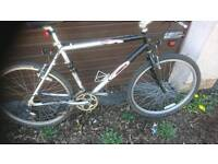CARRERA MENS MOUNTAIN BIKE, 20 INCH FRAME, 26 INCH WHEEL'S, 18 GEARS, GOOD CONDITION