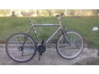 MENS GENTS ADULTS ARDEN DENVER 26INCH WHEEL 23INCH FRAME 18 SPEED BIKE BICYCLE