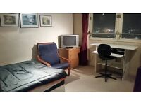 Spacious Double Room in 2 Bed Flat Near Canary Wharf & Stratford