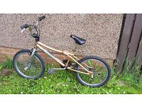GT Vertigo BMX Bike