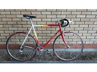 COLNAGO SPRINT ROAD BIKE IN OUTSTANDING CONDITION FULLY SERVICED 56CM COLUMBUS FRAME